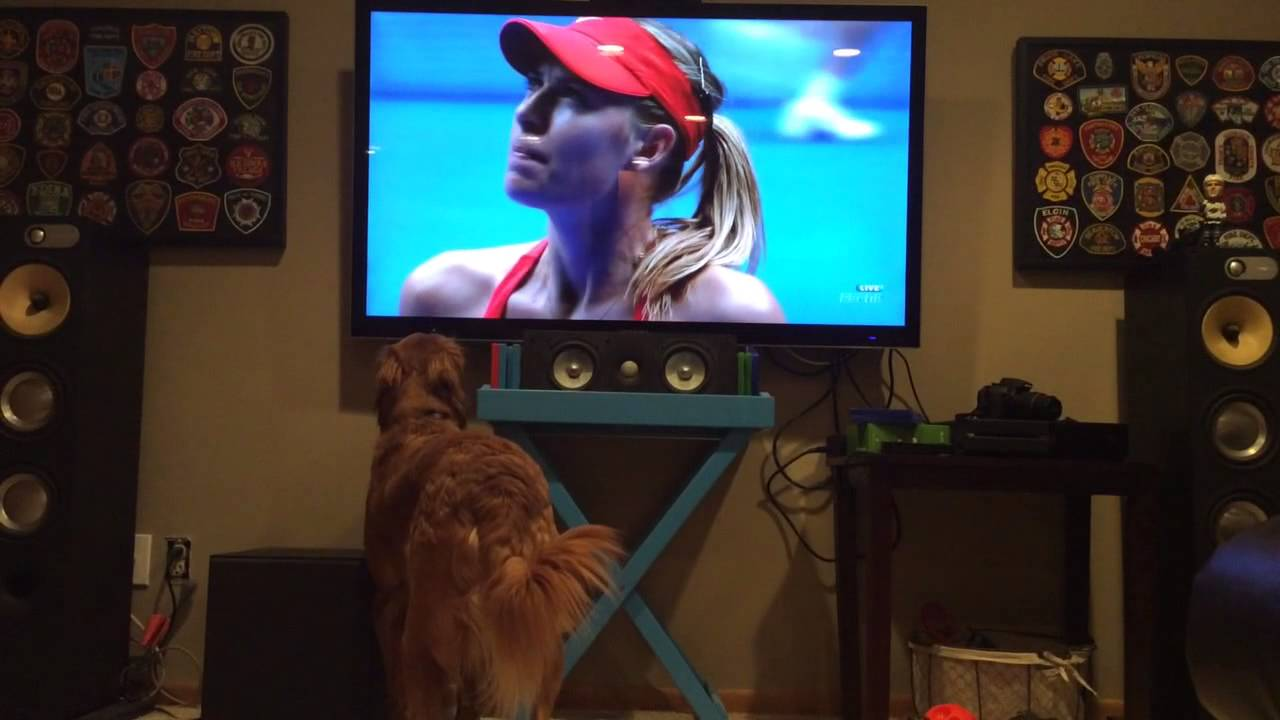 Georges, a special tennis fan