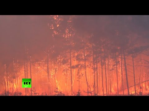 Chernobyl forest burning