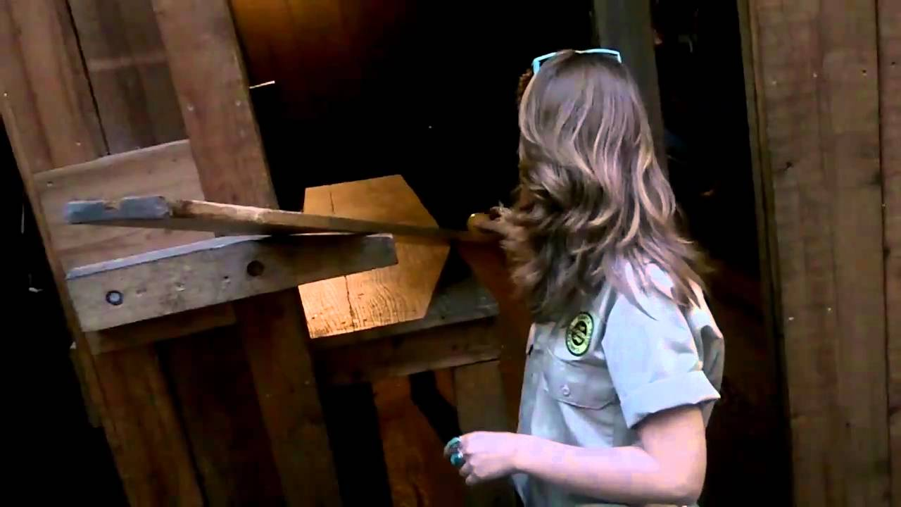 Meet Mystery Spot, the place that defies the laws of Physics